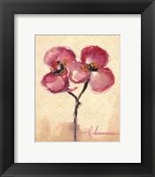 Framed Orchid Sketch I