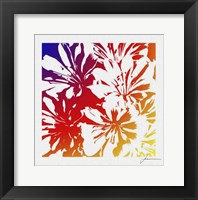 Framed Floral Brights I