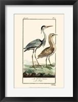 Framed Buffon Cranes & Herons III