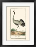 Framed Buffon Cranes & Herons IV