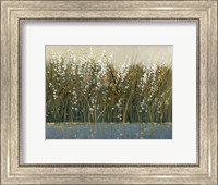 Framed By the Tall Grass I