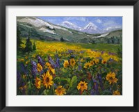 Framed Sierra Awakenings II