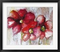 Framed Fuchsia Poppies II