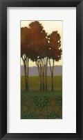 Framed Dreamer's Grove III