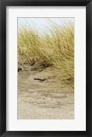 Dunes III Framed Print