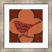Framed Moroccan Songbird IV