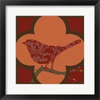 Moroccan Songbird IV Framed Print