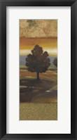 Sunset Creek I Framed Print