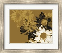 Framed Golden Bloom II