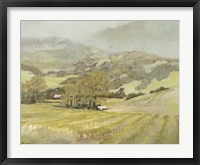 Spring Vineyard Framed Print