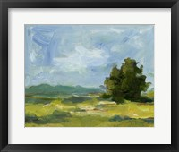 Field Color Study II Framed Print