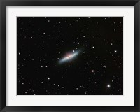 Framed Galaxy M82 in Ursa Major
