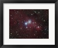 Framed NGC 2264 region showing the Cone Nebula, Christmas Tree Cluster, and Fox Fur Nebula