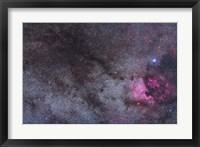Framed North America Nebula and dark nebulae in Cygnus