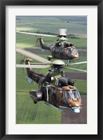 Framed Pair of Bulgarian Air Force Eurocopter AS532 AL Cougar helicopters