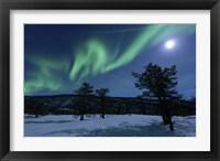 Framed Aurora Borealis, Forramarka, Troms, Norway
