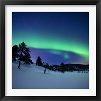 Framed Aurora Borealis and a shooting star in the woods of Troms County, Norway