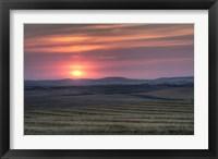 Framed Setting sun over harvested field, Gleichen, Alberta, Canada