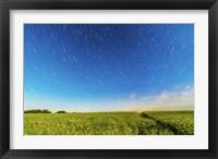 Framed Circumpolar star trails over a canola field in southern Alberta, Canada
