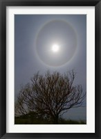 Framed 22 degrees halo around the 2013 supermoon