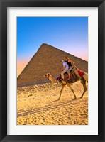 Framed Camel ride, Great Pyramids, Cairo, Giza Plateau, Egypt