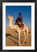Framed Bedouin man on camel, Douz, Sahara Tunisia, Africa