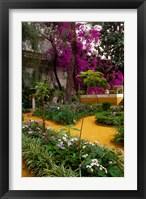 Framed Garden Courtyard, Marrakech, Morocco