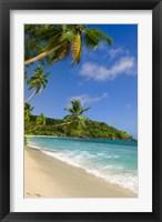 Framed Beach at Chez Batista's Restaurant, Seychelles