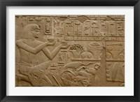 Framed Egypt, Luxor, Luxor Temple, Hieroglyphics