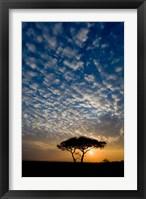 Framed Africa. Tanzania. Sunrise in Serengeti NP.