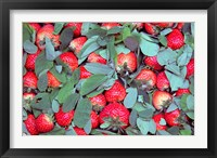 Framed China, Chongqing, Strawberries in fruit market