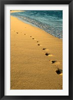 Framed Footprints in the Sand, Mauritius, Africa