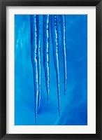 Framed Antarctica, Icicles hanging from the roof of a glacial ice cave.