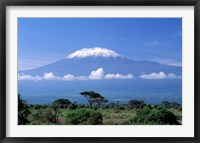 Framed Africa, Tanzania, Mt Kilimanjaro, landscape and zebra