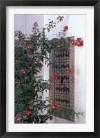 Framed Courtyard with Zellij (Mosaic Tilework), Marrakech, Morocco