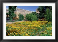 Framed Gardens and Crenellated Walls of Kasbah des Oudaias, Morocco