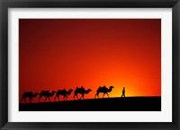 Framed Camel Caravan at Sunrise, Silk Road, China
