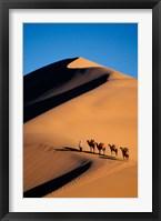 Framed Camel Caravan with Sand Dune, Silk Road, China