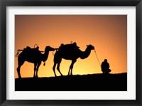 Framed Camel Caravan Silhouette at Dawn, Silk Road, China
