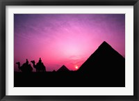 Framed Colorful Sunset Silhouetting Men and Camels at the Great Pyramids of Giza, Egypt