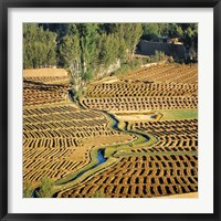 Framed Afghanistan, Bamian Valley, Farmland and irrigation