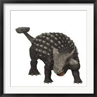 Framed Ankylosaurus was an armored dinosaur from the Creataceous Period
