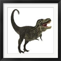 Framed Tyrannosaurus Rex, a large predatory beast of the Cretaceous period