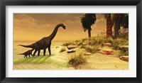 A mother Brachiosaurus Dinosaur and her offspring Framed Print