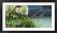 Framed Dilong dinosaurs watch two Brachiosaurus wade across a lake