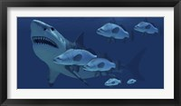 A school of fish encounter a monstrous Megalodon shark Framed Print