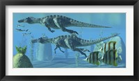 Two Suchomimus dinosaurs search for big fish prey underwater Framed Print