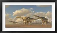 Framed herd of Argentinosaurus dinosaurs