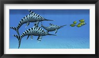 Framed group of fast swimming Eurhinosaurus marine reptiles