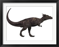 Framed Dracorex, a herbivorous dinosaur from the Cretaceous period